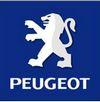 Pack leds pour modèles Peugeot